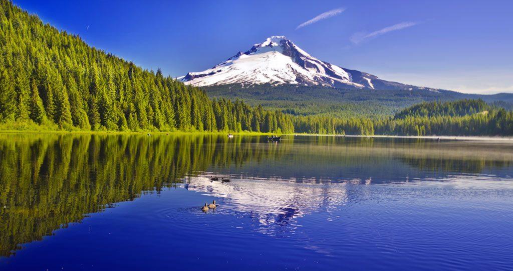 Stephen Hamn enjoys fishing, skiing, and flying.
